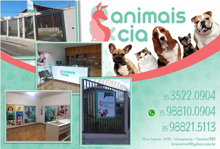 Animais e Cia Clínica Veterinária