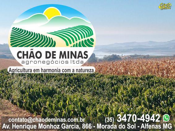 CHÃO DE MINAS AGRONEGÓCIOS